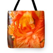 Rhodies Art Prints Orange Rhododendron Flowers Baslee Troutman Tote Bag