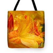 Rhodies Orange Yellow Rhododendrons Art Prints Canvas Baslee Troutman Tote Bag