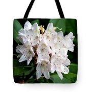 Rhododendron Family Of Flowers Tote Bag