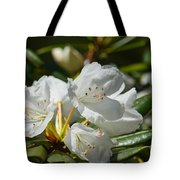 Rhododendron I Tote Bag