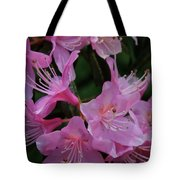 Rhododendron In The Pink Tote Bag