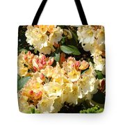 Rhododendrons Garden Art Prints Creamy Yellow Orange Rhodies Baslee Tote Bag