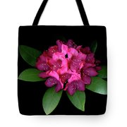 Rhody Queen - Red Tote Bag
