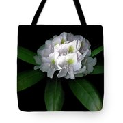 Rhody Queen - White Tote Bag