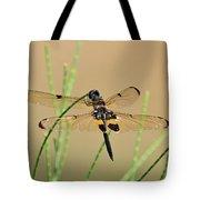 Rhyothemis Phyllis Tote Bag