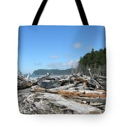 Rialto Beach Washington  Tote Bag