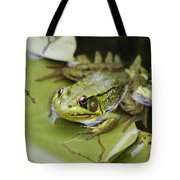 Ribbet In The Pond Tote Bag