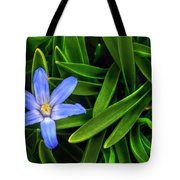 Ribbons Of Spring Tote Bag