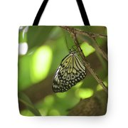 Rice Paper Butterfly Clinging To A Tree Branch Tote Bag