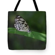 Rice Paper Butterfly On A Long Daylily Leaf Tote Bag