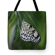 Rice Paper Butterfly Sitting On Green Foliage Tote Bag
