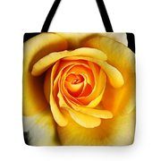 Rich And Dreamy Yellow Rose   Tote Bag