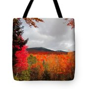 Rich Fall New Hampshire Colors Tote Bag