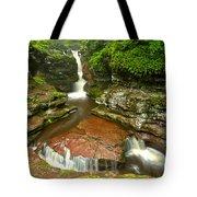 Ricketts Glen Adams Falls Tote Bag