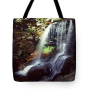 Ricketts Glen Falls 029 Tote Bag