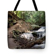 Ricketts Glen Falls 030 Tote Bag
