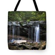 Ricketts Glen Oneida Tote Bag