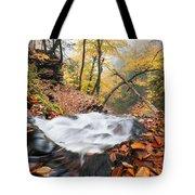 Ricketts Glen State Park Ganoga Falls Allegheny Mountains Pennsylvania Tote Bag