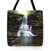 Ricketts Glen Waterfall Tote Bag