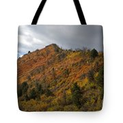 Ridge Line Tote Bag