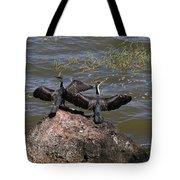 Rift Valley Cormorants Tote Bag