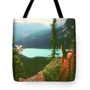 Rim-riding O'er The Canadian Rockies Tote Bag