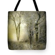 Rimy Forest Windy Daybreak By Laszlo Mednyanszky 1896 Tote Bag