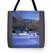 Rincon Trail - Sequoia Tote Bag