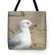 Ring-billed Gull Tote Bag