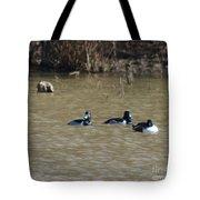 Ring Neck Ducks  Tote Bag