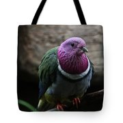 Ring Necked Dove Tote Bag