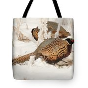 Ring-necked Pheasant Hunting In The Snow Tote Bag