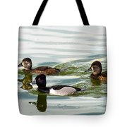 Ring-necked Trio Tote Bag