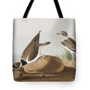 Ring Plover  Tote Bag
