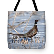 Ringneck Pheasant Rooster In Snow Tote Bag