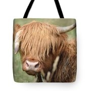 Ringo - Highland Cow Tote Bag