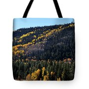 Rio Grande National Forest Tote Bag