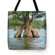 Ripley Tennessee Cypress Tote Bag