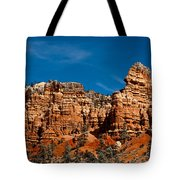 Rippled Walls Tote Bag