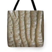 Ripples In The Sand I Tote Bag