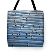 Ripples Of Sand Dotted With Plovers Tote Bag