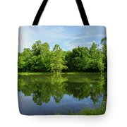 Ritter Springs Pond Tote Bag