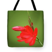 Ritzy Red Tote Bag