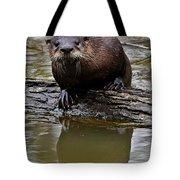 Rive Otter Tote Bag