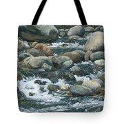 River At Sierra Subs Tote Bag