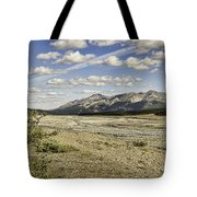 River Bed In Denali National Park Tote Bag