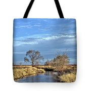 River Duck Morning 2 Tote Bag
