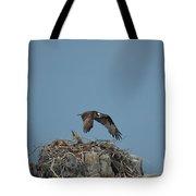 River Hawk Hovering Over A Nest Tote Bag