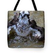 River Hawk Splashing Around In The Water Tote Bag