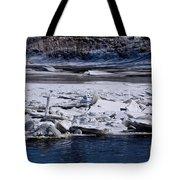 River Ice Tote Bag